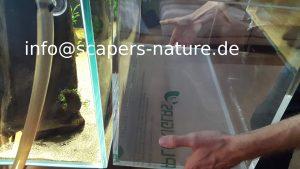 Acryl vs Weißglas Aquarium